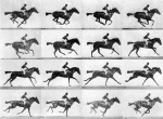 EadweardMuybridgeHorseinmotion