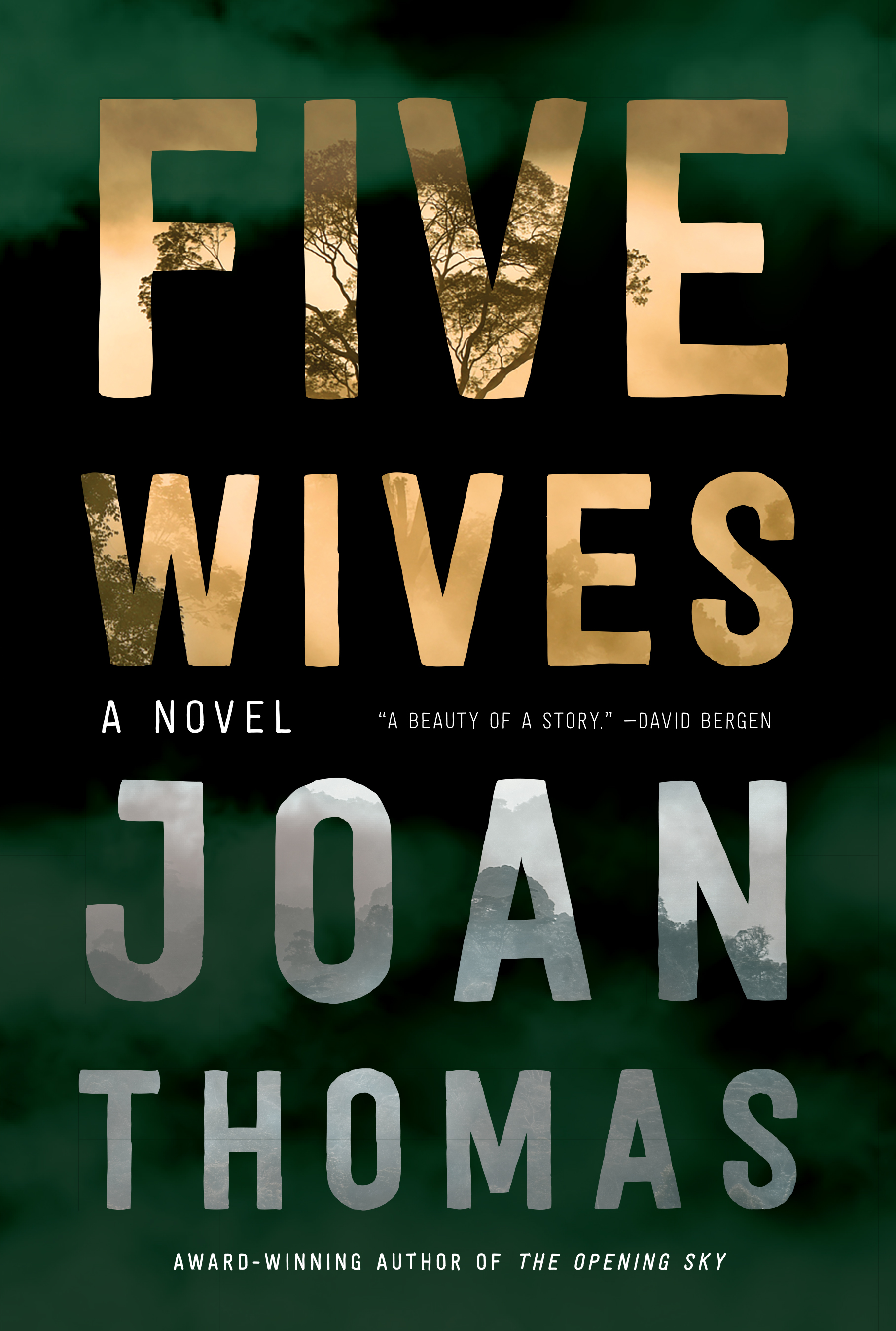 Five Wives book cover image